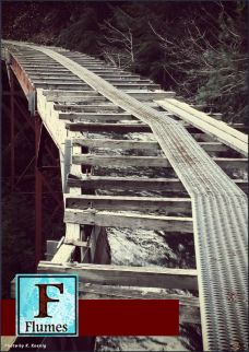 Flumes 1.1 cover